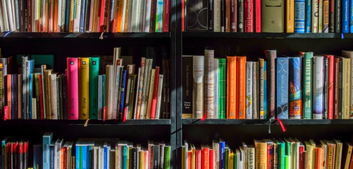 Visiting the Library: Affordable Fun and Learning